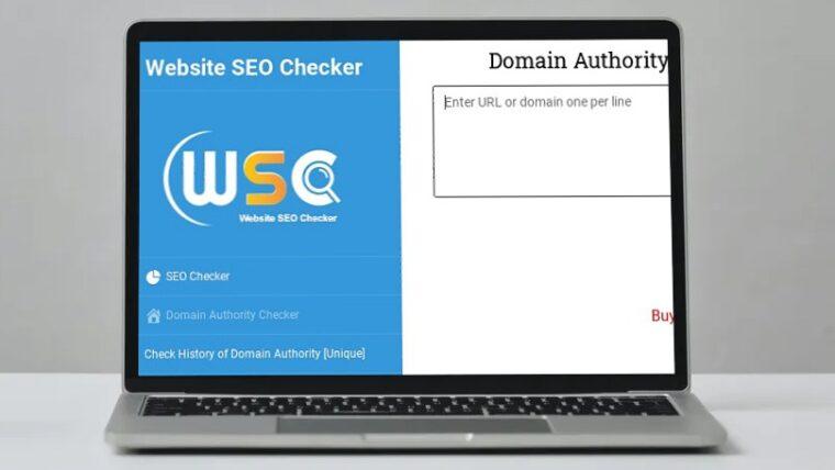 Trabajando con Website SEOChecker